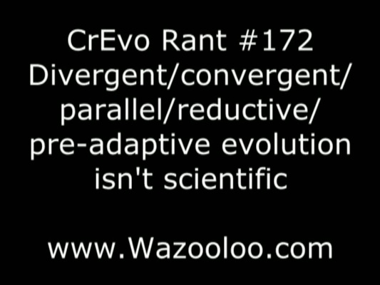Product picture Convergent evolution CrEvo rant 172